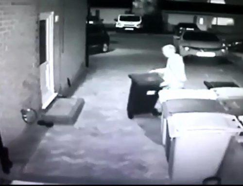 Wheelie Bin Theft